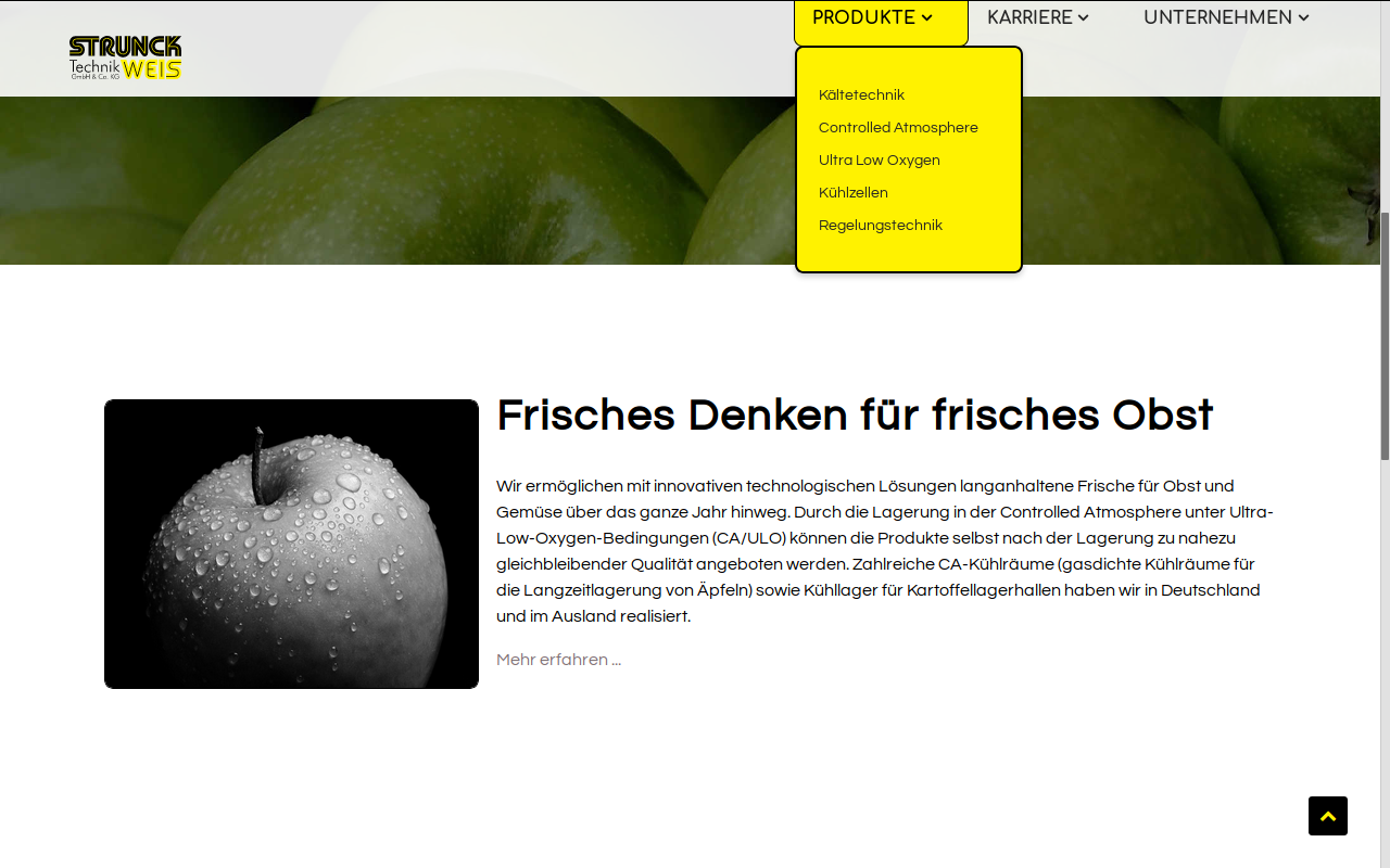 Website der Strunck-Weis Technik GmbH & Co. KG